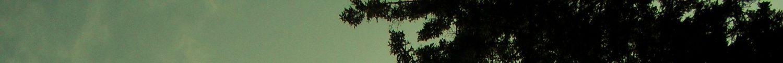 cropped-sdc14807-2-kopie.jpg