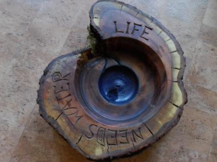 Leben braucht Wasser....